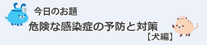 PK_BLOG.jpg_inu
