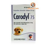 carodyl-75mg