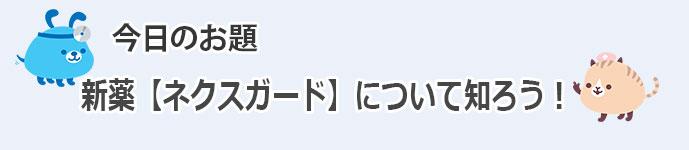PK_BLOG.jpg20150505
