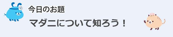 PK_BLOG.jpg0721