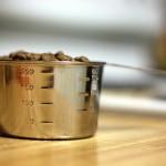 健康な体作りは正しい食事から。食事のキホン!