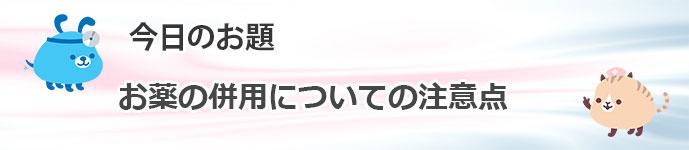 PK_BLOG.jpg2121
