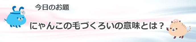 PK_BLOG-Recovered.jpg2016-1